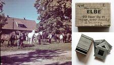 25 Farb-Dias, Pferde-Musterung in Havighorst, Badendorf, Willendorf, von 1940