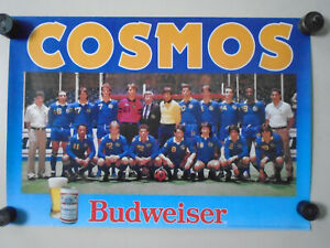 "COSMOS - Original Vintage promo Poster ""1985""  Exc. New cond.16 x 23"" Budweiser"