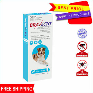 BRAVECTO Spot On 1 Pipette 20 to 40 Kg BLUE 6 Months Flea treatment for Dogs