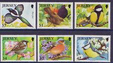 JERSEY 2007 BIRDLIFE PÁJAROS JARDÍN SET OF 6 PARA, MNH