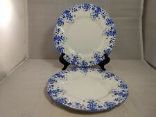 Set of 2 Royal Albert Dainty Blue Luncheon Plates