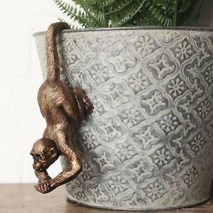 Monkey Pot Hanger