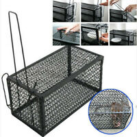 Humane Rat Trap Cage Live Animal Pest Rodent Mice Mouse Control Catch Bait Home