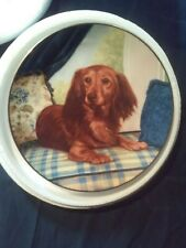 Dachshunds Window Seat Plate Dog Puppy Danbury Mint Christopher Nick