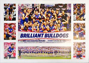 2016 Premiers Western Bulldogs AFL L/E Premiergraph Print Brilliant Bulldogs