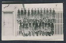 1910's SILVER GREY FOX SKINS, Native Alaskan Hunting Vintage Photo Postcard