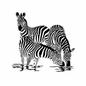 Shower Curtain Cute Animal Zebra Design Waterproof Fabric 72 inch 12 Hooks
