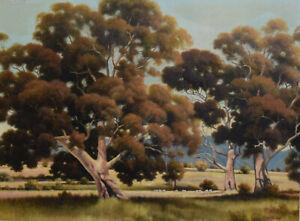 AUSTRALIAN SCHOOL ~ SPLENDID ORIGINAL OIL PAINTING