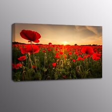 HD Canvas Print Red Poppy Flowers Painting Picture Poster Wall Art Home Decor