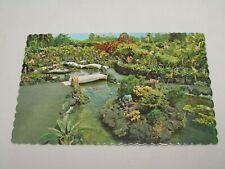 i68 Postcard Hawaiian Hawaii HI Hilo Orchid Garden