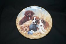 Franklin Mint Puppy Plate Dish Dog Collectible Jay Millen Porcelain Pause
