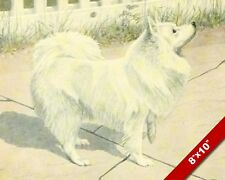 White German Spitz Dog Pet Dog Art Profile Painting Print On Real Canvas