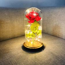 Glass Bottle Jar Flower LED Twig Vase Lights Wedding Xmas Power Rose 6A