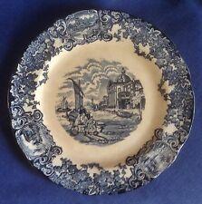 Vintage Plate. Cyprus pattern. F J Emery Burslem ?