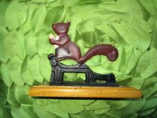 Gorgeous   nut cracker-squirrel