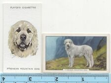 Pyrenean Mountain Dog Pet Canine 2 Different Vintage Ad Trade Cards #4