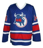 Any Name Number Size Birmingham Bulls Custom Hockey Jersey Blue Durbano