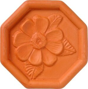 BROWN SUGAR SAVER- DAISY DESIGN