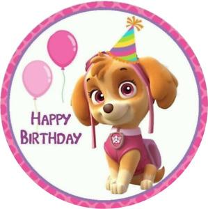 Pink Paw Patrol Skye balloons cake topper,round, precut icing edible personalise