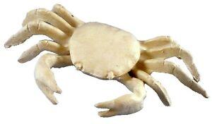 Cast Iron Nautical Tropical Beach Antiqued White Crab