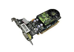 XFX GeForce 9500GT 512MB VGA DVI Standard Profile Graphics Card