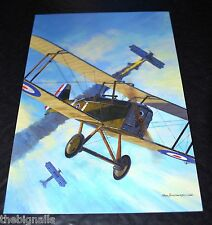 WW I Aircraft SE Sa shooting down a Pfaiz D III  Large Postcard