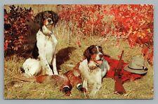 Hunting Hound w Kills—Gun Partridge burds—Vintage Rifle PC Dog—Ozzie Sweet 1950s