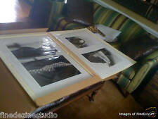 Ralph Gibson, OVERTONES PORTFOLIO: Sardenia & Two Nudes Diptychs. each 30 x 40in