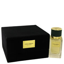 Dolce & Gabbana Velvet Vetiver Perfume By DOLCE & GABBANA FOR WOMEN 1.6 oz.EDP