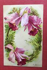 CPA. Illustrateur KLEIN. Alphabet O. Guirlande d'Orchidées ?. Années 1900.
