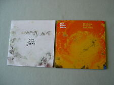 RUN RIVER NORTH job lot of 2 promo CDs Drinking From A Salt Pond