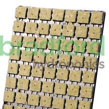 Grodan SBS 77 tray For Seedlings Cuttings Potting Plants Propagation Rockwool
