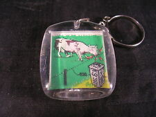Porte clef, visiomatique, cloture électrique Clotseul, vache