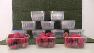 PACK (100) 1/4LB (125GM) CLEAR PLASTIC FRUIT PICKING PUNNET NEW