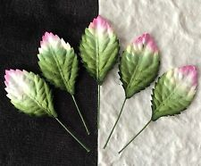 20 Rose Leaves Small leaf rose variegated Green Pink wedding floral card wreaths