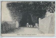 CARTOLINA 1912 TAINO VIALE CURTI GIA' SERBELLONI 1168/A