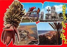 Spain Saludos desde Gran Canaria Hotel Plage Beach Fountain Parrots