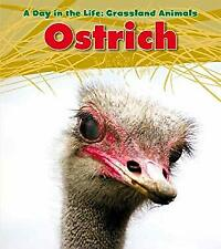 Ostrich Paperback Louise A. Spilsbury