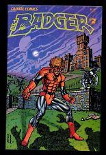 BADGER 2 (9.4) 1ST RILEY THORP COMICO MIKE BARON  JEFF BUTLER (b059)