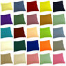 Soft1000TC EGYPTIAN COTTON 2European/Standard Pillowcases Queen/King SOLID COLOR