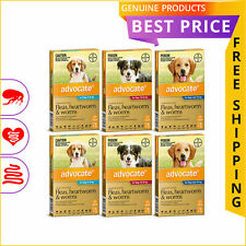 ADVOCATE 12 Doses for Dogs Flea Heartworm Worm treatment All sizes
