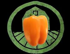 25+ Orange Bell Pepper Seeds |Sweet chili, chile seeds | Usa Grown