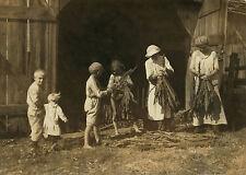 "1916 Antique Photo, Tobacco Farming, Children, labor, Kentucky Farm, 16""x11"""