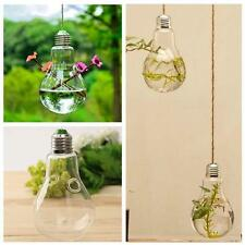 Glass Wall Hanging Vase Ball Shaped Plant Flower Garden Hydroponic DIY Decor UP