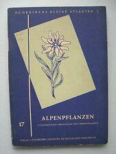 Alpenpflanzen 57 naturgetreue Abbildungen von Gebirgspflanzen Nr. 17 um 1930??