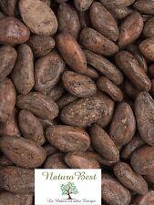 Fèves de Cacao BIO cru 100gr