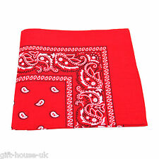 Paisley Bandana Bandanna Headwear/Hair Band Scarf Neck Wrist Wrap Band HeadtieB3