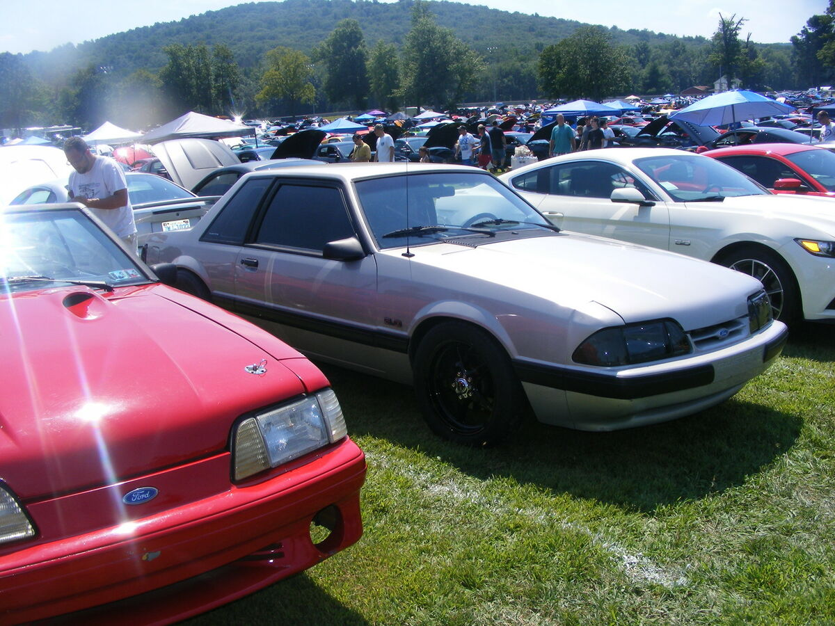 mustang store of pa