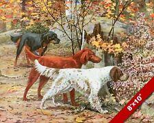 Gordon Irish & English Setter Gun Dogs Dog Art Painting Print On Real Canvas