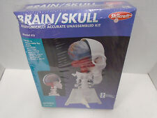 SKILCRAFT #71335 BRAIN/SKULL MODEL KIT NEW IN ORIGINAL BOX
